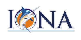 Black Marlin Game Fishing Cairns with Iona Game Fishing